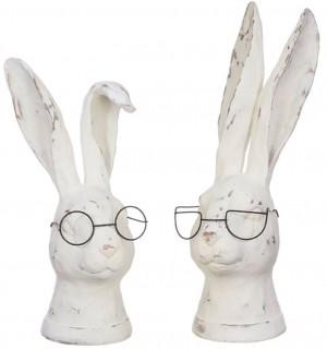 Rabbit with Glasses