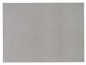 Skate Gray Rectangle Placemat