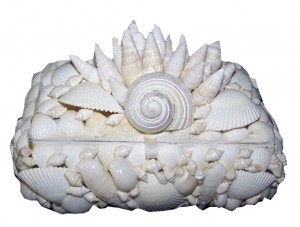 """7""""  White Shell Cluster Top Box"""